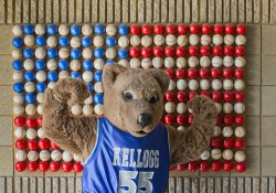 Blaze, KCC's mascot, flexes in front of an American flag made of baseballs at C.O. Brown Stadium