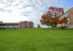 A view looking up the hill on the North Avenue campus toward the library and the Spring Lake Room