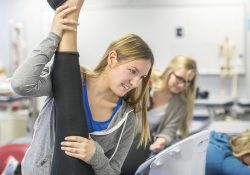 PTA Program students work with other students on stretching in the PTA Lab.