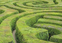 A labyrinth photo courtesy of Flickr user fribbleblib, used under a Creative Commons Attribution 2.0 Generic license.