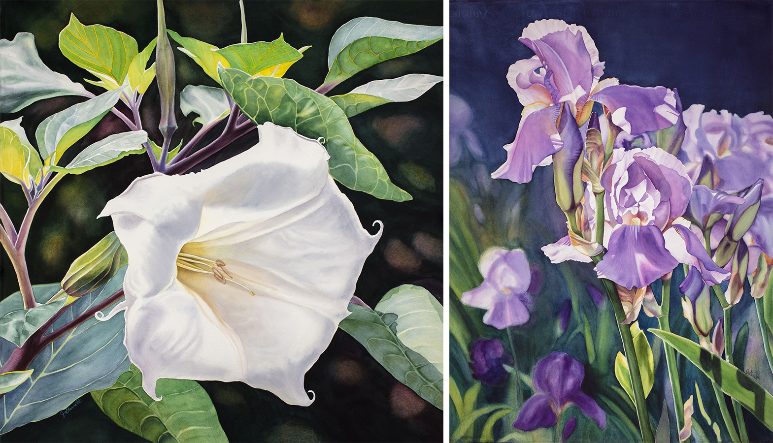 Flower paintings by Janice Garrett.
