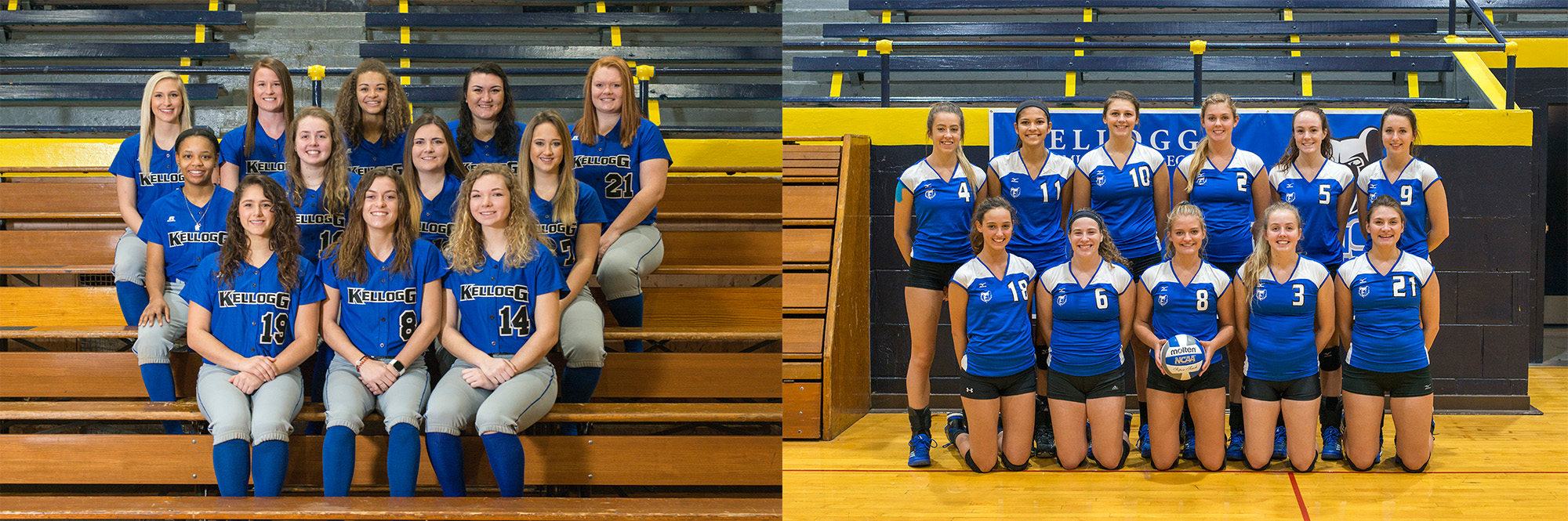 Team photos of KCC's 2017-18 softball and volleyball teams.