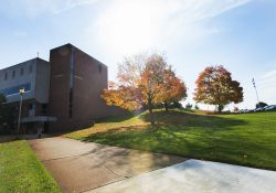 Trees outside the Roll Building on a fall day on KCC's North Avenue campus in Battle Creek.