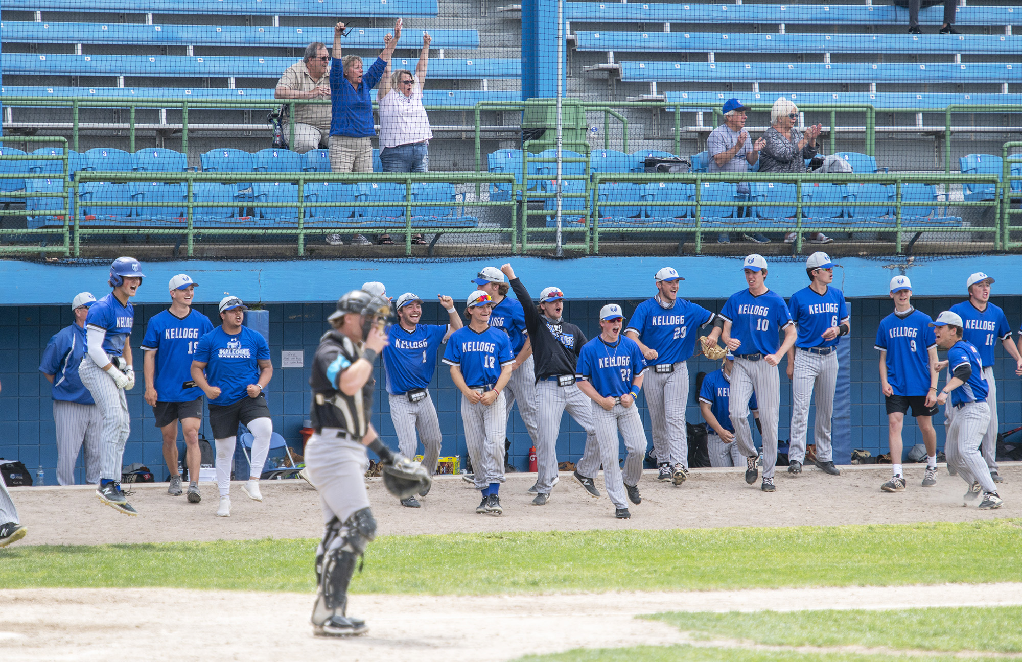The KCC baseball team cheers from the dugout during a game.